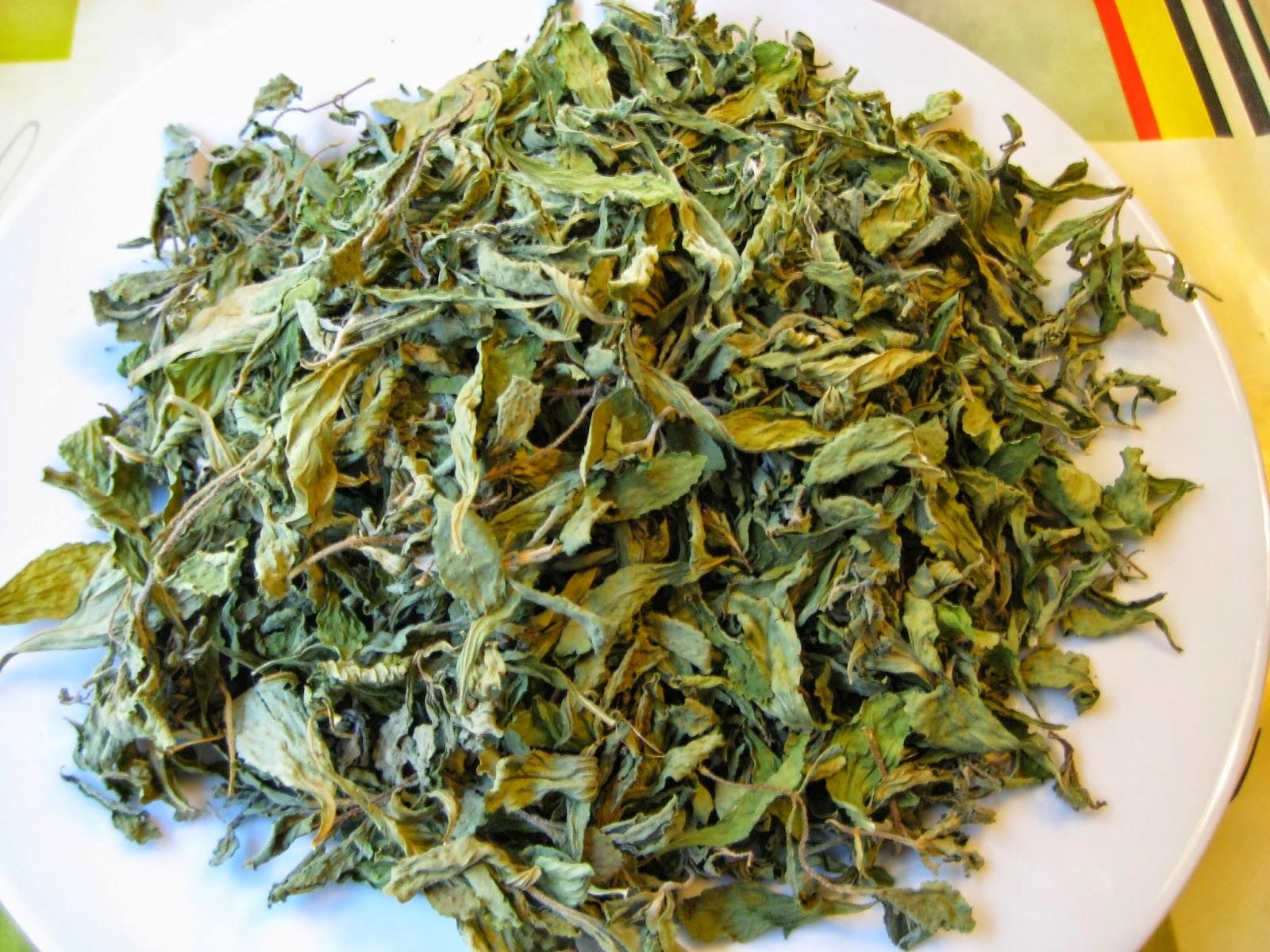 Cách dùng và liều lượng sử dụng trà lá sen